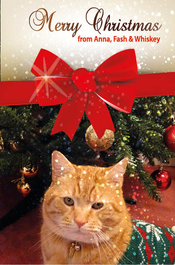 Christmas card with ginger cat